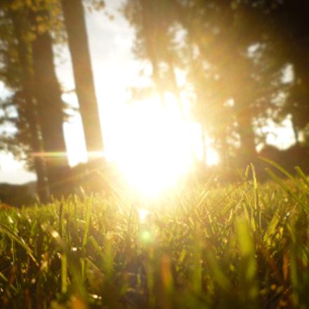 Sun, glass and no, Panasonic DMC-FS15