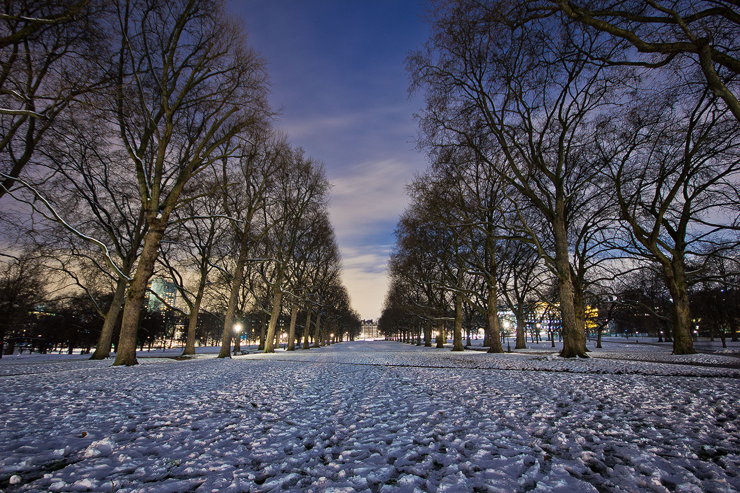 Photograph Green Park at night by Paulo Eduardo Canedo Nabas on 500px