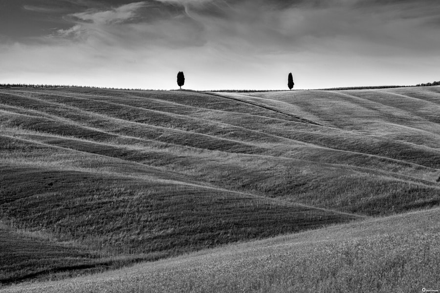 Tuscany, автор — Jürgen Brochmann на 500px.com