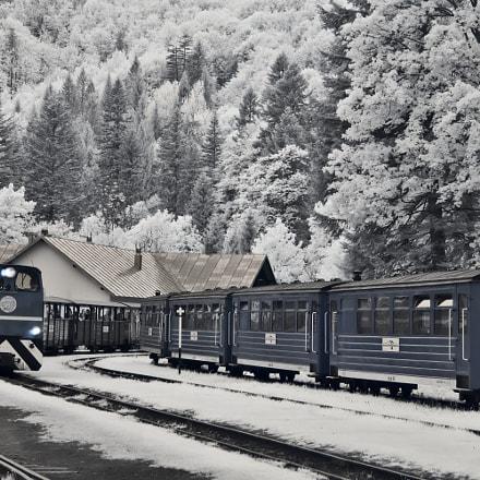 Narrow Gauge Forest Railway, Samsung NX100