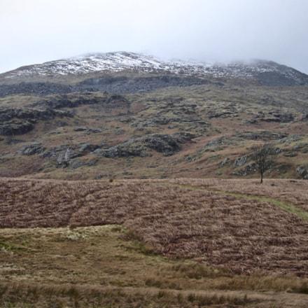 hill, Sony DSC-M2