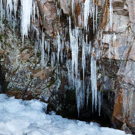 A Cold Day Hovs, Canon EOS 6D MARK II