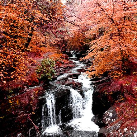 Ireland Torc Waterfall, Sony DSC-WX200