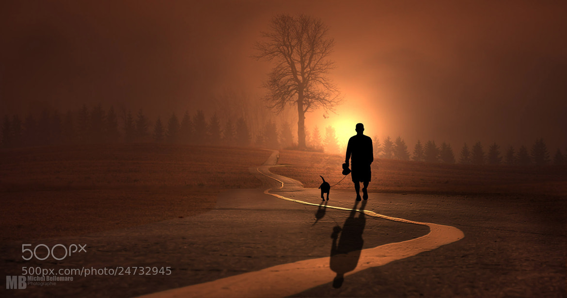 Photograph The morning walk by Michel Bellemare on 500px