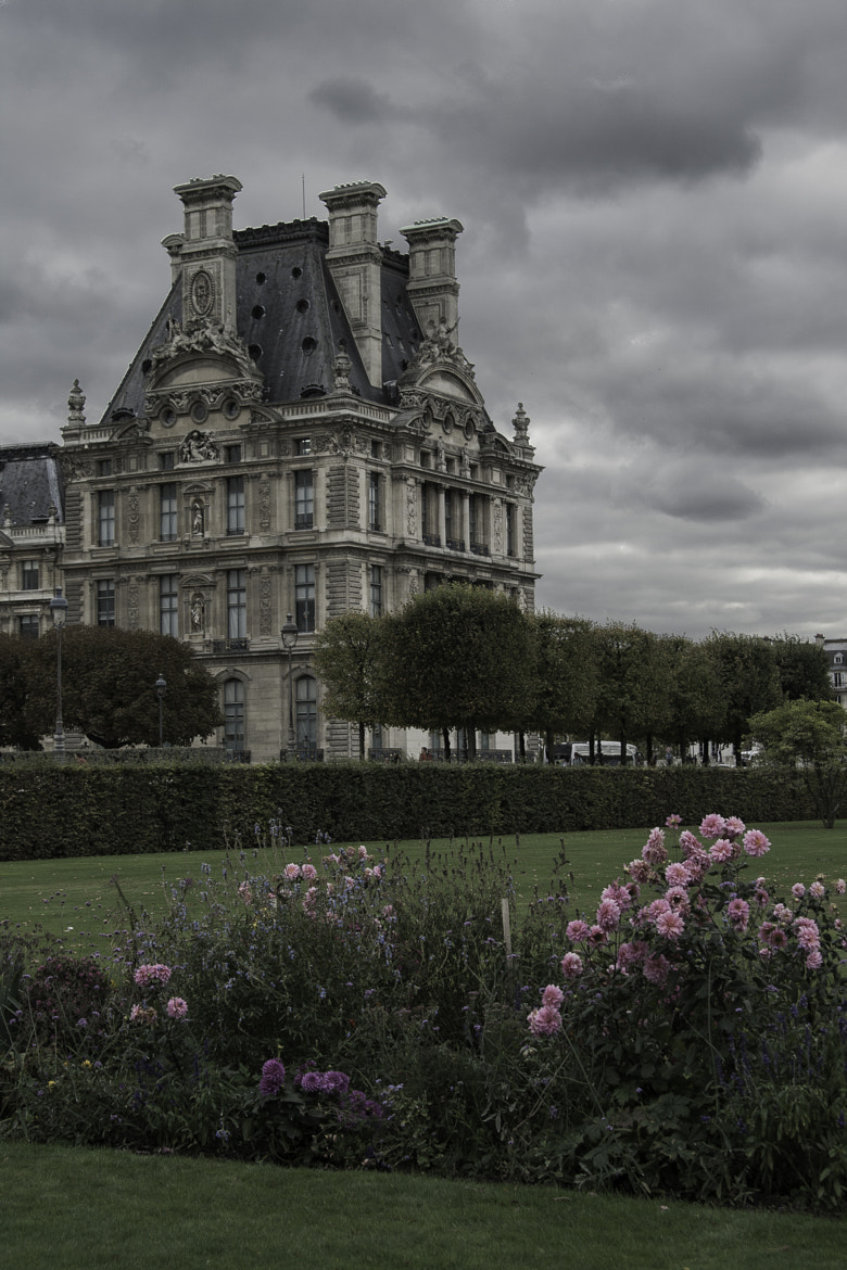 Photograph The Louvre from the Tuileries Garden by Erik A on 500px