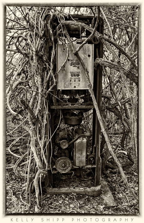 """Photograph """"Rooted Pump"""" by Kelly Shipp on 500px"""