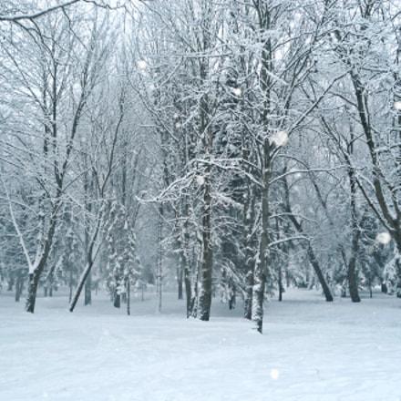 Заснеженный парк, Sony DSC-W510