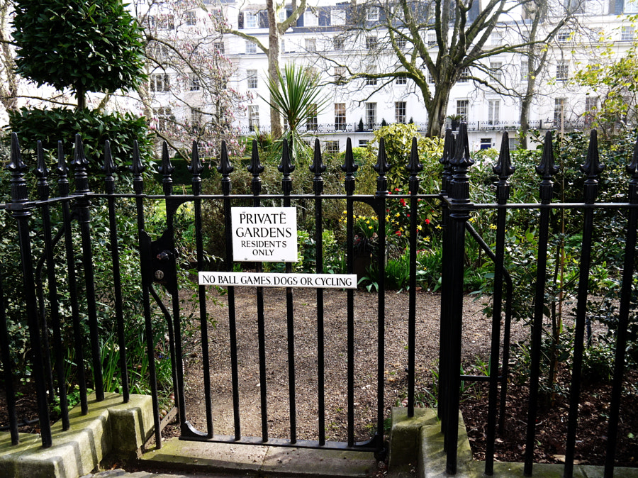 Montpelier Square, London by Sandra  on 500px.com