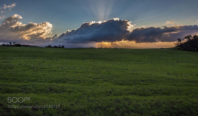Photograph Hidden Sun by Gustavo Avila-Ortiz on 500px