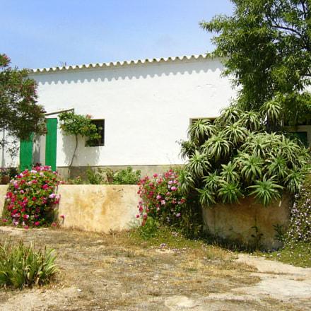 Ibiza, Panasonic DMC-LC50