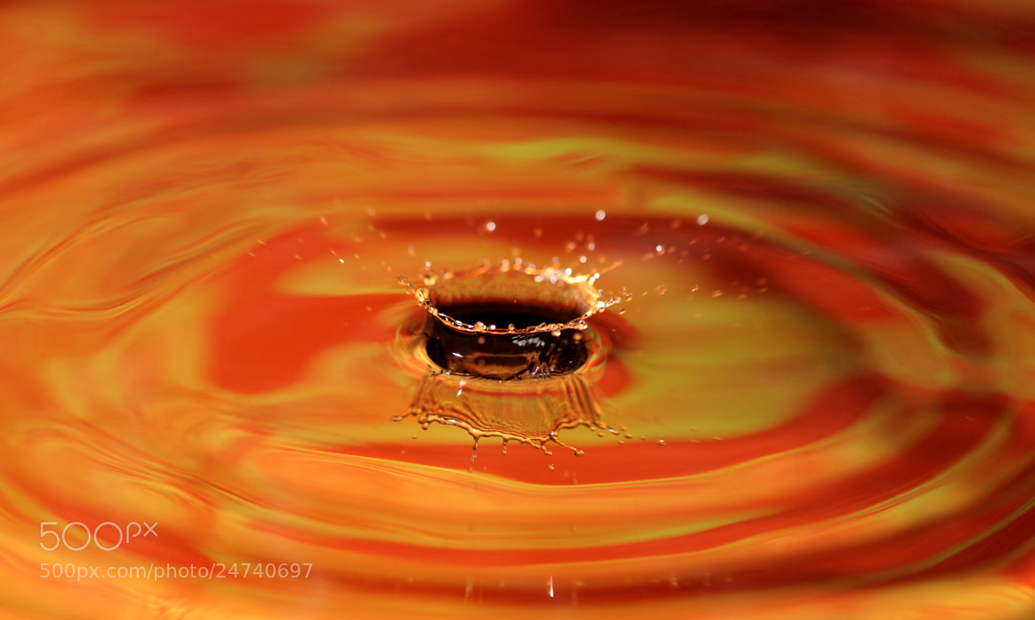 Photograph Orange Splash  by Lindsey McKnight on 500px