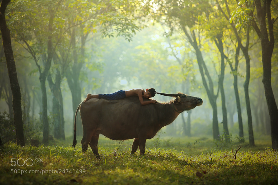 Photograph rest n relax by taufik sudjatnika on 500px