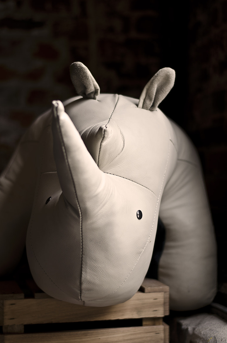 Photograph Rhino In The Room by H S | ÒuÔ on 500px