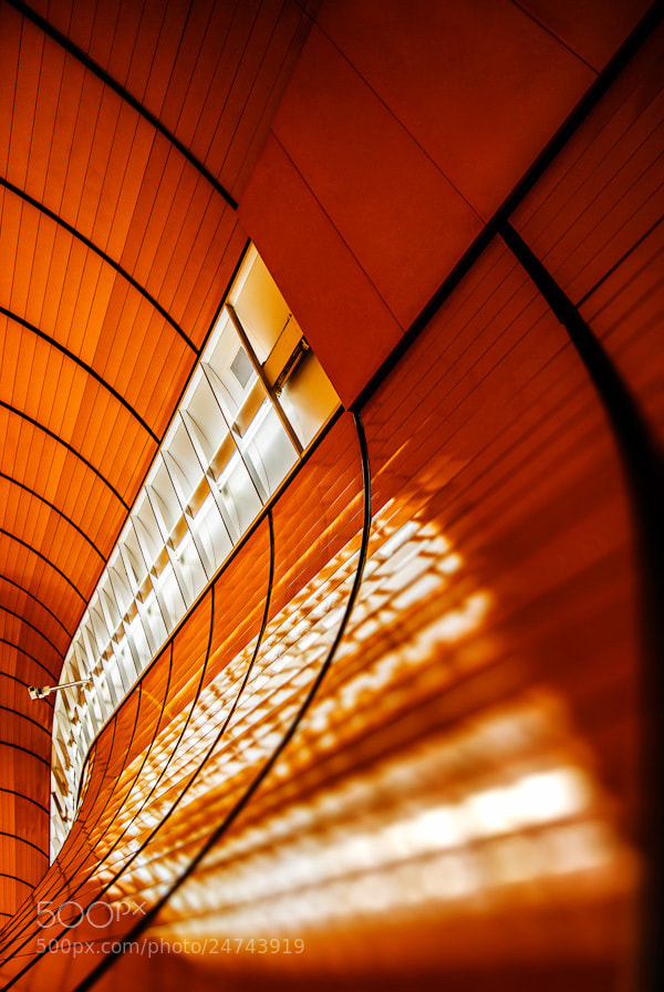 Photograph Orange Glow by Jared Lim on 500px