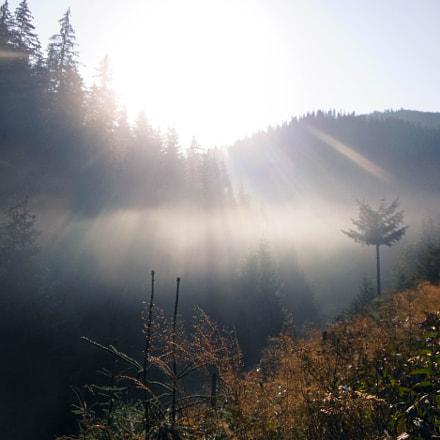 Morning fog, Nikon COOLPIX S6300