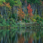 Small reflection lake in Acadia NP, optimized using Nik's CEP4 (glamour glow and tonal contrast)