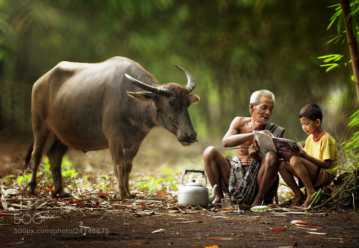 Photograph Morning Study by Herman Damar on 500px