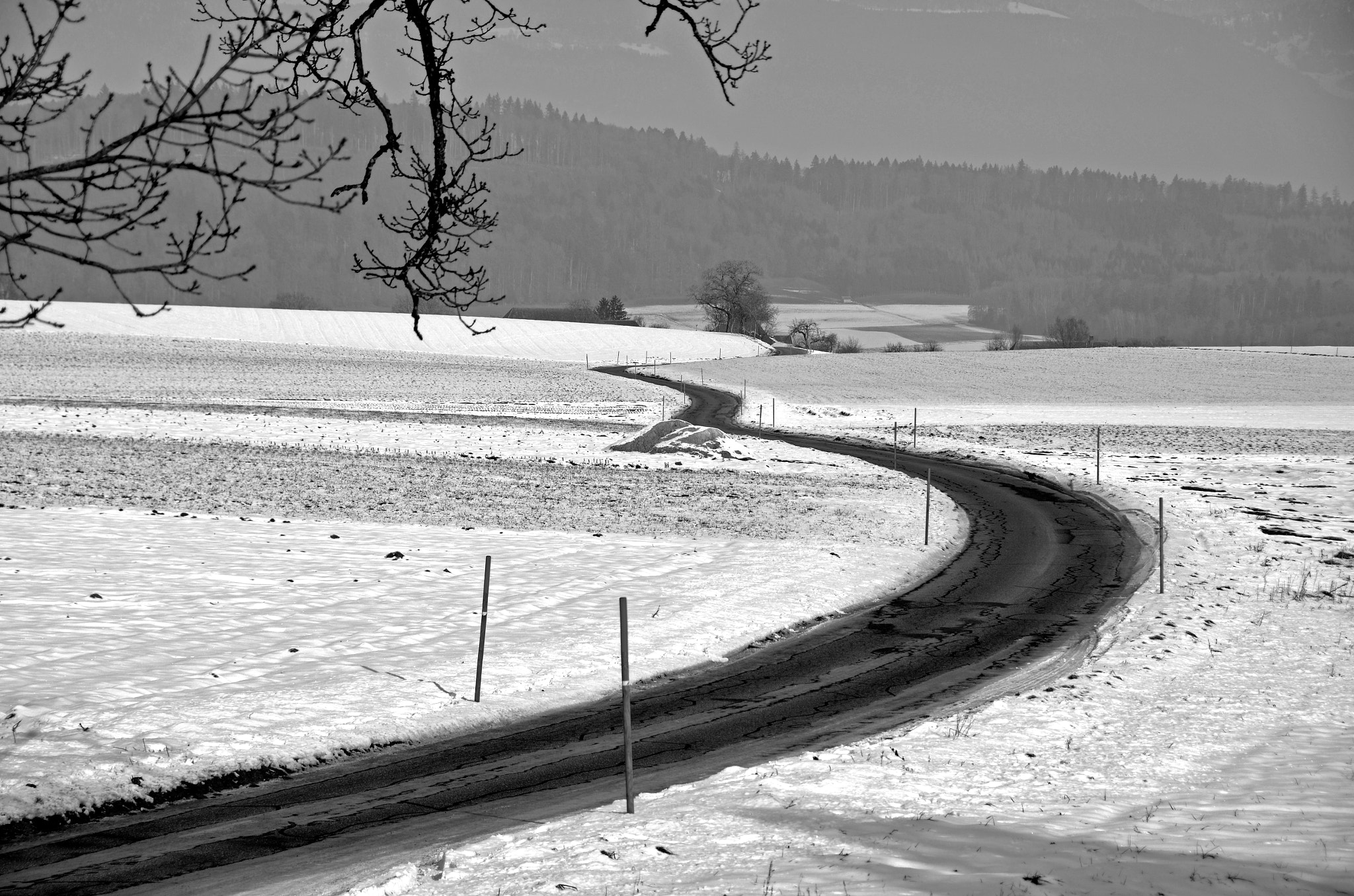 Photograph The winding road by Peter Kempf on 500px