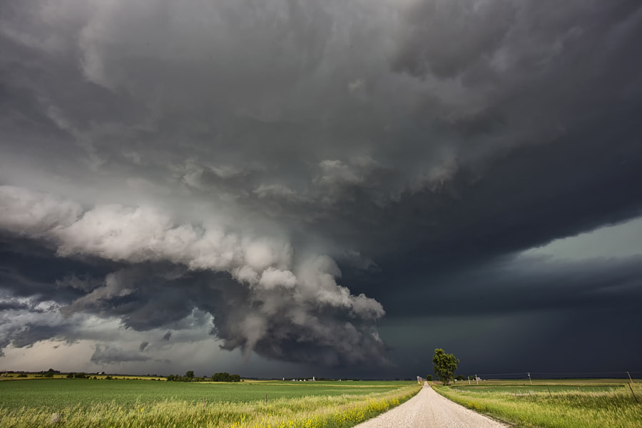 Dangerous Contrast by Roger Hill on 500px.com