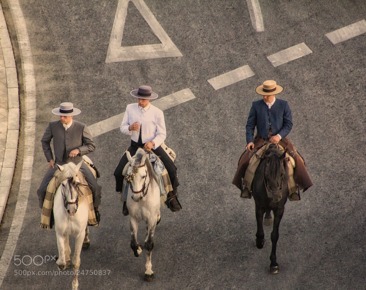 Photograph Caballistas by Lola Camacho on 500px