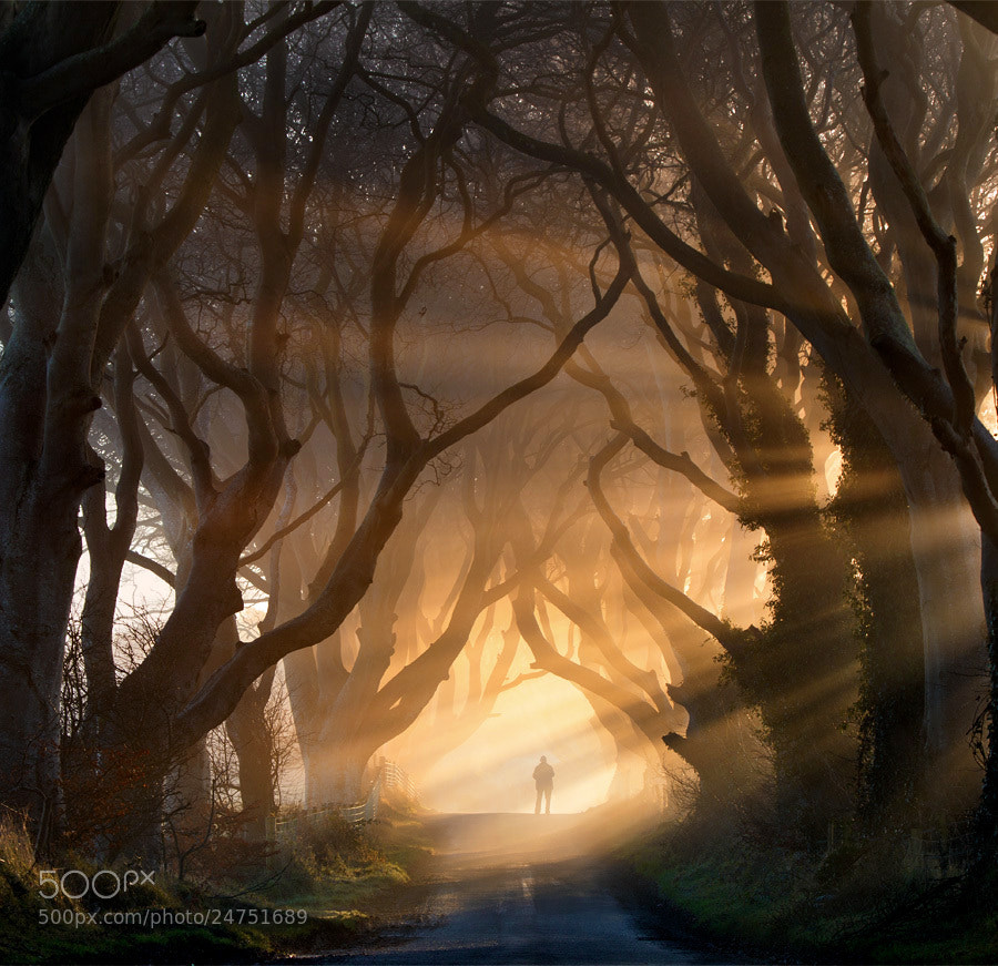Photograph Heaven's Gate by Stephen Emerson on 500px