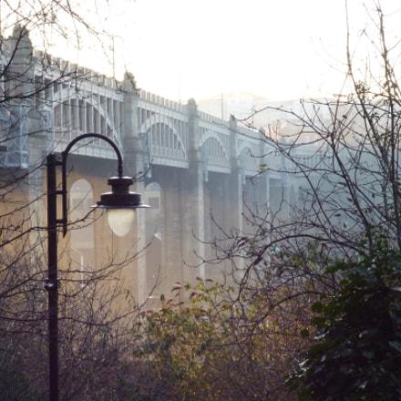 Street light on long, Panasonic DMC-FS16