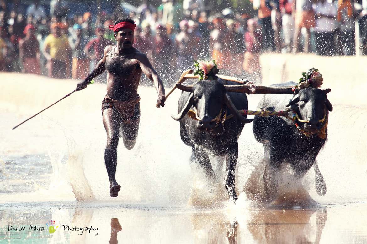 Photograph  Usian BolT of India by Dhruv Ashra on 500px