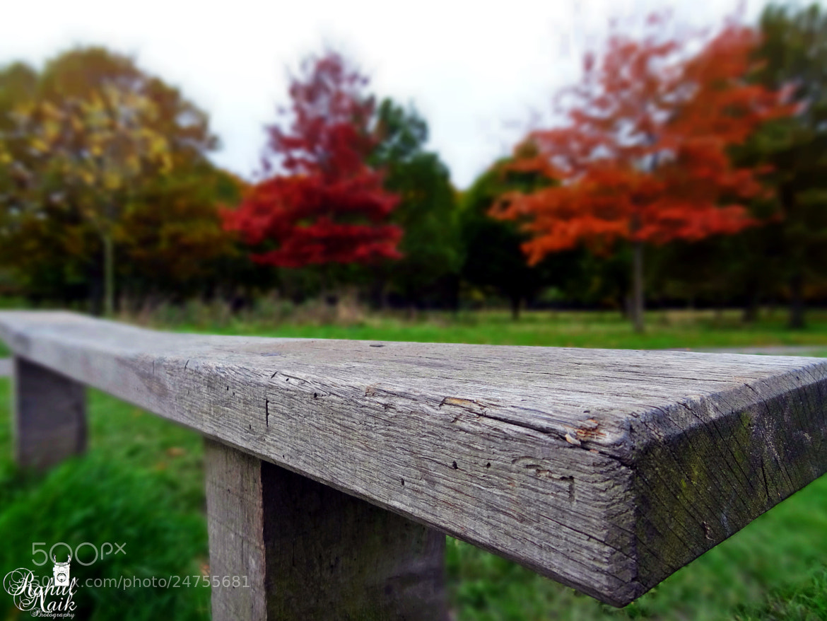 Photograph Park Bench Upclose by Rahul Naik on 500px