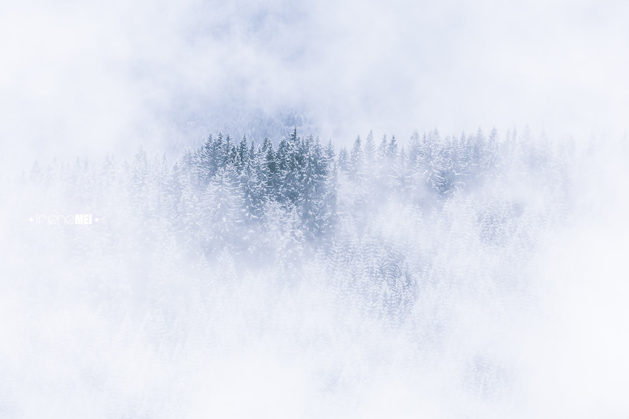 Photograph Up in the Clouds by Irene Mei on 500px