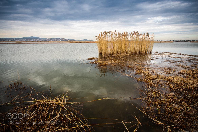 Photograph Lake Velence by Zoltán Istvánffy on 500px