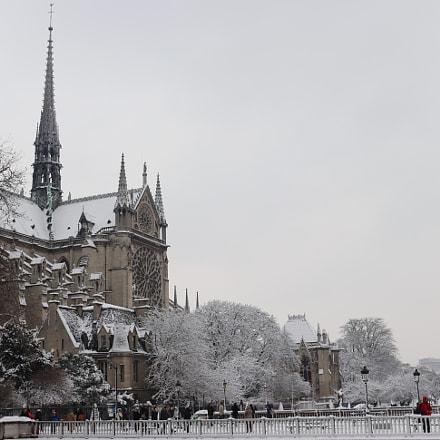 Notre Dame de Paris, Canon EOS 200D, Canon EF 24mm f/2.8 IS USM
