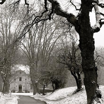 Winter day, Sony DSC-H3
