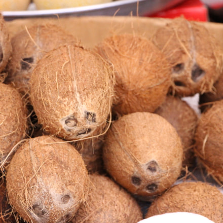 tired coconuts