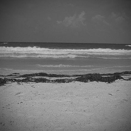Beach day, Canon POWERSHOT A560