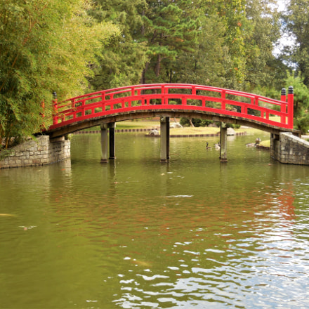 Bridge, Nikon COOLPIX S6800