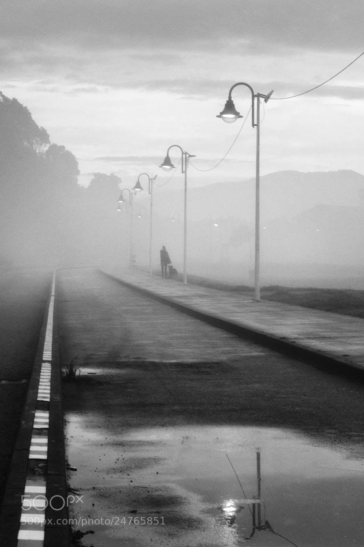 Photograph Dogwalk by Saghani  on 500px