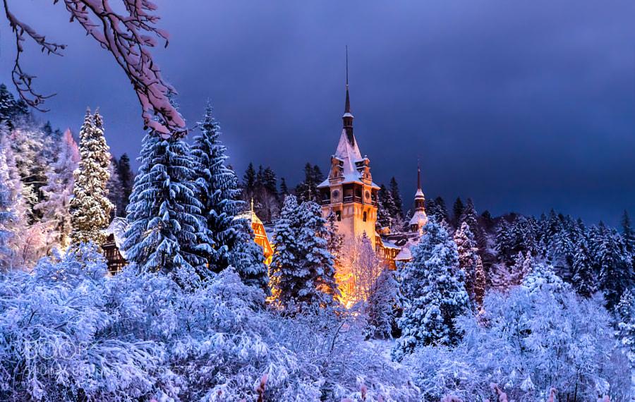 Photograph Peles Castle. Royal Estate of Sinaia. Romania © Nora de Angelli / www.noraphotos.com by Nora De Angelli on 500px