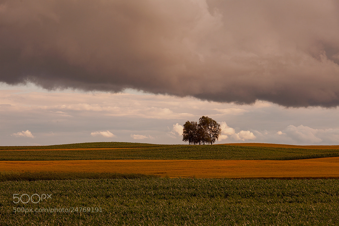 Photograph Cloud press by Vytautas Mikalauskas on 500px