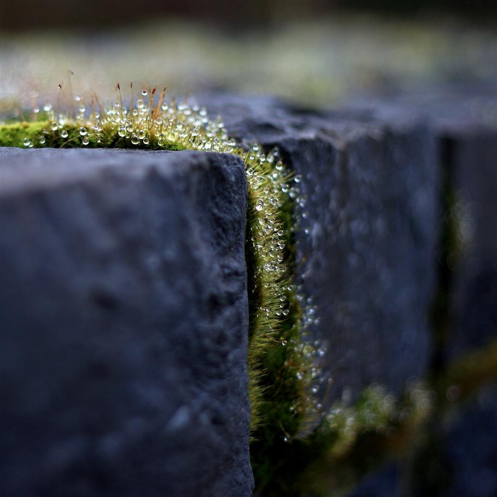 Photograph On the edge by Annie Japaud on 500px
