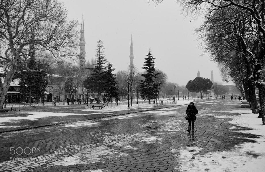 Photograph Untitled  by ali  başarır on 500px