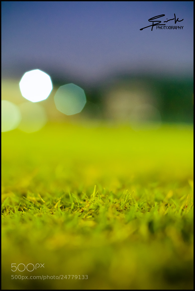 Photograph Grass by saurik s shah on 500px