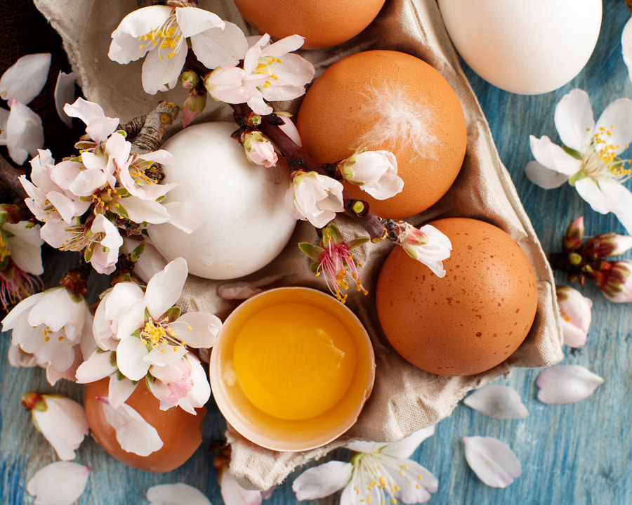 Chicken eggs and almond flowers by Ekaterina Fedotova on 500px.com