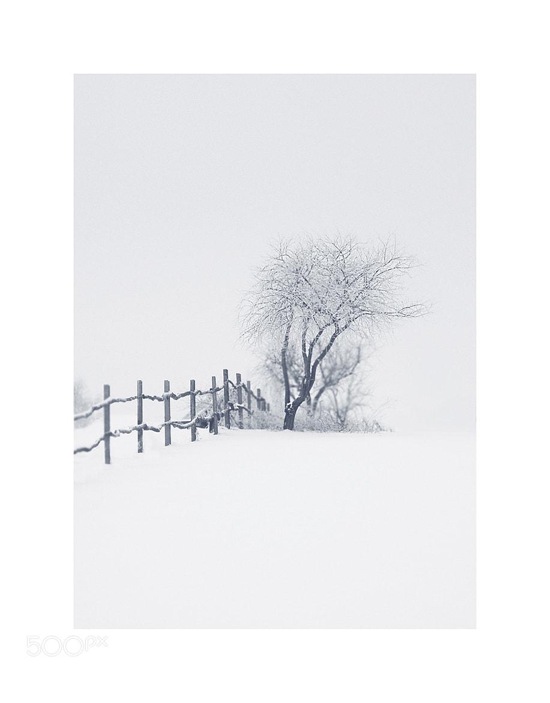 Photograph Untitled by Ugnė Matukaitytė on 500px
