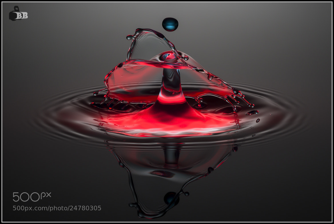 Photograph using an umbrella by bb-pictures I bb-pictures I on 500px