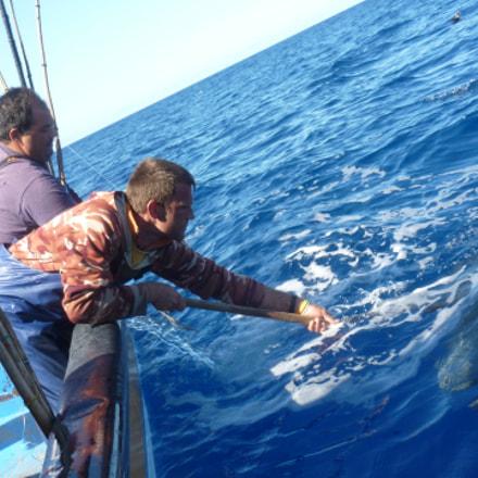 FISHING THE TUNA, Panasonic DMC-TZ18