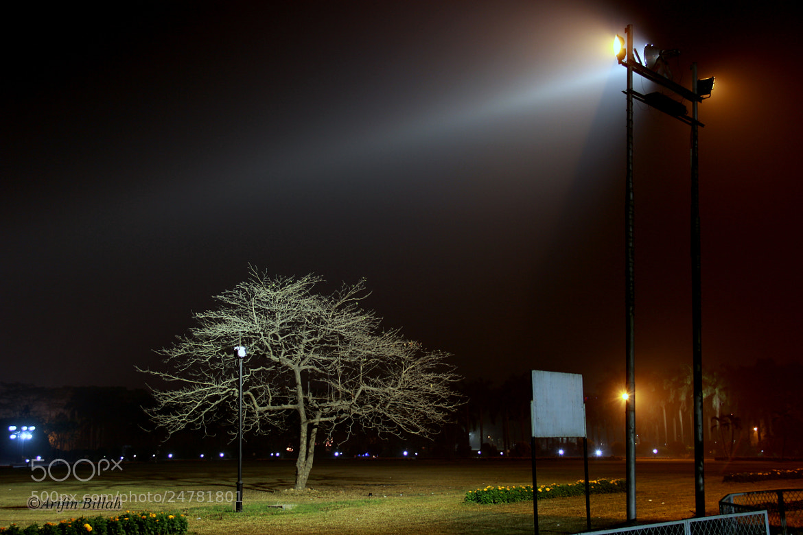 Photograph Lamppost by Arifin Billah on 500px