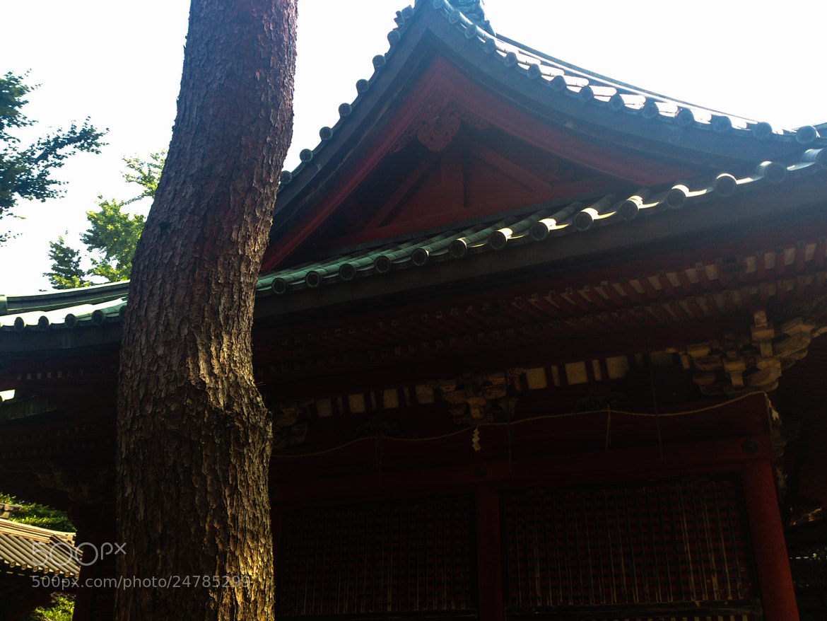 Photograph Untitled by fuyu00 on 500px