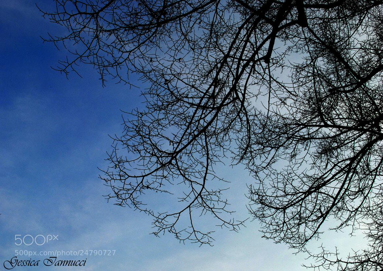 Photograph Guarda su. by Gessica Iannucci on 500px