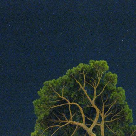 Cielo Notturno, Night Sky, Canon DIGITAL IXUS 85 IS