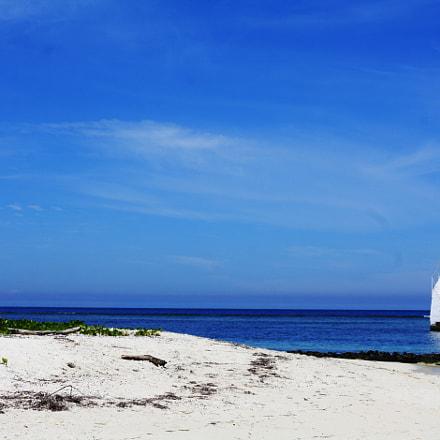 Amedee Island, Canon EOS KISS F, Canon EF 50mm f/1.4 USM